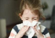 czy można mieć alergię na kurz?